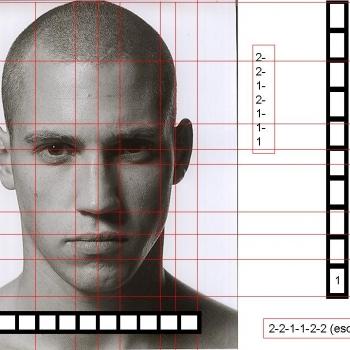 Proporciones rostro humano.